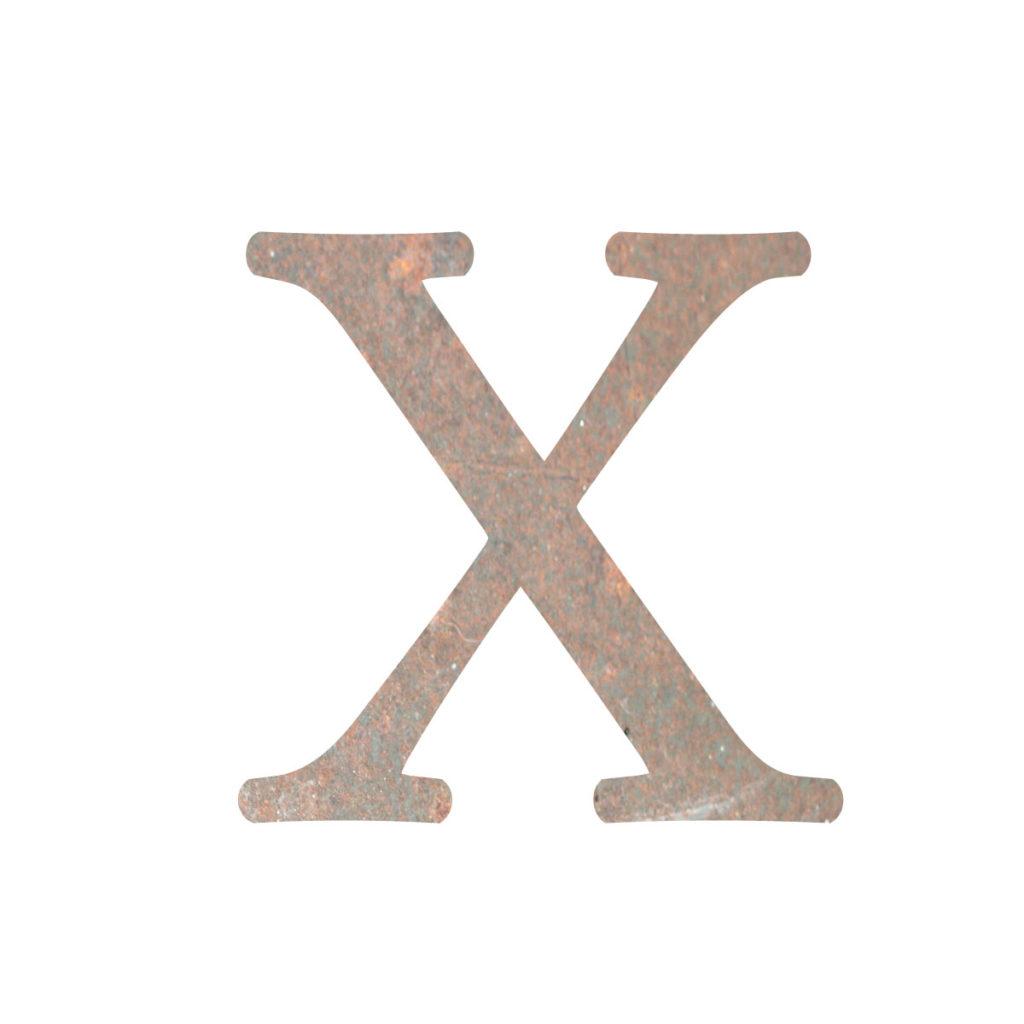 ihoneX